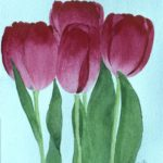 Tulips. Watercolour.