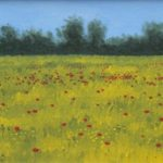 yellow field with poppiesa